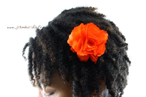 Barrette-Fleur-Orange-Porte